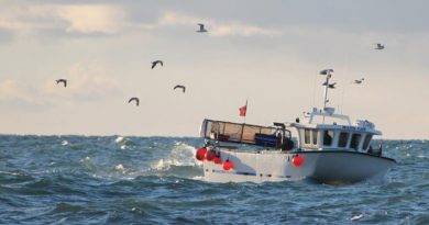 Government working with seafood sector to overcome post-Brexit obstacles